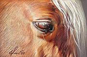 Horse Framed Prints - Dark Palomino Framed Print by Elena Kolotusha