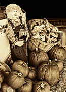 Husks Prints - Dark Sepia Scarecrow with Pumpkins  and Basket Print by Linda Phelps