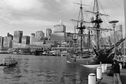 Sydney Skyline Art - Darling Harbor Sails by Harlan Fijal-Campbell