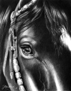 Cowboy Pencil Drawings Prints - DArtagnans Soul Print by Jill Westbrook