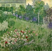 Flowers Field Prints - Daubignys Garden Print by Vincent Van Gogh