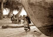 Tropical Photographs Originals - Daughter of the Maldives by Terence Davis