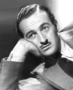 Publicity Shot Photos - David Niven, 1938 by Everett