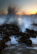 Coral Cove Photos - Dawn Explosion by Mike  Dawson