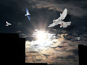 Terry Wallace Digital Art Prints - Dawn Flight Print by Terry Wallace