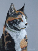 Cat Pastels - Dawn by Heather Ward