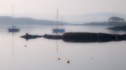 Subtle Prints - Dawn Light Glengarriff Print by John Perriment