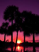 Lake Buena Vista Prints - Dawn Of Another Perfect Day Print by Kenneth Krolikowski