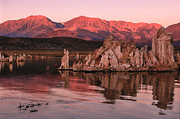 Mono Prints - Dawn On  Mono Lake Print by Sandra Bronstein