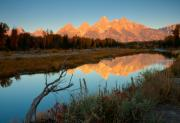 Natures Beauty Framed Prints - Dawn on the Tetons Framed Print by Idaho Scenic Images Linda Lantzy
