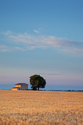 Provence Photos - Dawn over lone farmhouse by Brian Jannsen