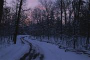Woodland Scenes Posters - Dawn View Of A Snow-covered Road Poster by George F. Mobley