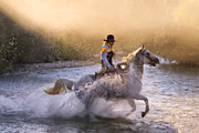 Running Horses Paintings - Dawns Misty Waters by Janet Fikar