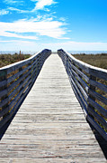 Path To The Beach Photo Prints - Day at the Beach Print by Carol Groenen