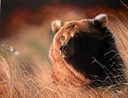 Grizzly Pastels Prints - Day Dream Print by Deb Owens