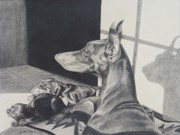 Dog Artists Drawings - Day Dreams by Cynthia Riley