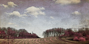 Panorama Mixed Media - Day in wintertime by Angela Doelling AD DESIGN Photo and PhotoArt