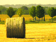 Hay Bale Photos - Day Is Done by Joe JAKE Pratt