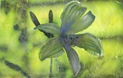 Close Up Floral Painting Prints - Day Lily number one Print by Gary Deslauriers