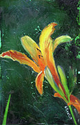 Day Lilly Framed Prints - Day Lily number two Framed Print by Gary Deslauriers
