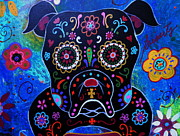 Skull Paintings - Day Of The Dead Bulldog by Pristine Cartera Turkus