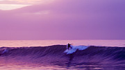 Surfing Digital Art Posters - Daybreak at Rincon Poster by Ron Regalado