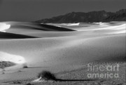 Tularosa Posters - Daybreak at White Sands Poster by Sandra Bronstein