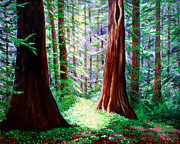 Laura Iverson Framed Prints - Daybreak in the Redwoods Framed Print by Laura Iverson