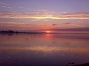 Martina Fagan - Daybreak