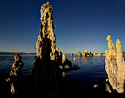 Daybreak On Mono Lake Print by Joe Schofield