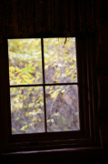 Cabin Window Framed Prints - Daydream Framed Print by Linda Knorr Shafer