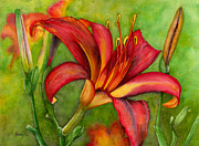 Stigma Originals - Daylily splendor by Wend Boomhower