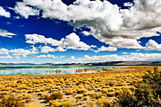 Mono Lake Framed Prints - Daytime Drama Framed Print by Aron Kearney Photography