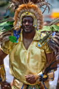 Dc Caribbean Carnival No 21 Print by Irene Abdou