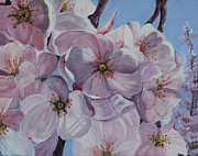 Cherry Blossoms Painting Prints - DC Cherry Blossoms Print by Pauline  Kretler