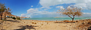 Panorama Digital Art Originals - Dead Sea Panorama by Moshe Moshkovitz