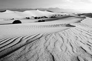Sand Patterns Metal Prints - Death Valley Dunes 11 Metal Print by Bob Christopher
