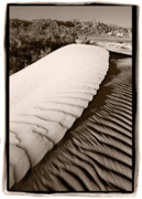 Death Valley Framed Prints - Death Valley Sand Dune Framed Print by Steve Gadomski