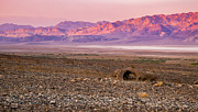 Jean Noren Framed Prints - Death Valley Sunset Framed Print by Jean Noren