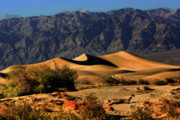 Barren Land Prints - Death Valleys Mesquite Flat Sand Dunes Print by Christine Till
