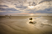South Carolina Prints - Debris on the Beach - Hunting Island SC Print by Bill Swindaman