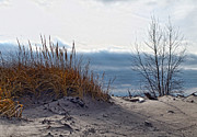 York Beach Framed Prints - December Dune Framed Print by Peter Chilelli