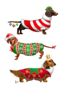 Christmas Dogs Posters - Decorative Dachshunds Poster by Michelle Guillot