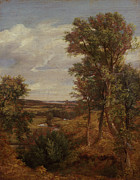 Tree Outside Posters - Dedham Vale Poster by John Constable