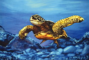 Reptiles Drawings - Deep Blue by Kathleen Kelly Thompson