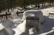 Backyards Posters - Deep Snow Covers Table And Chairs Poster by Tim Laman