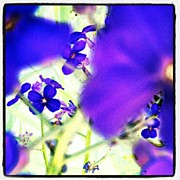 Impressionism Art - Deep Violets #abstract #android by Marianne Dow