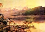 Reproduction - Deer At Lake McDonald