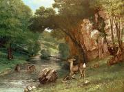 Wild Animals Metal Prints - Deer by a River Metal Print by Gustave Courbet