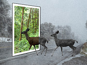 Snowstorm Framed Prints - Deer Crossing Framed Print by Methune Hively